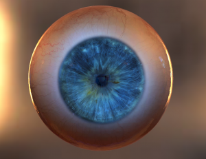 Occhio realizzato in software di modellazione 3D e animato in Three.js